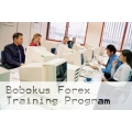 Available Forex Tutorial Bobokus Training Program